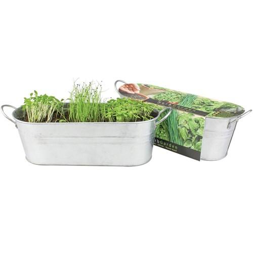 Buzzy Windowsill Herb Garden Kit Cooking Cleverpatch Art Craft Supplies